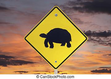Desert Tortoise Crossing Sign with Sunrise Sky