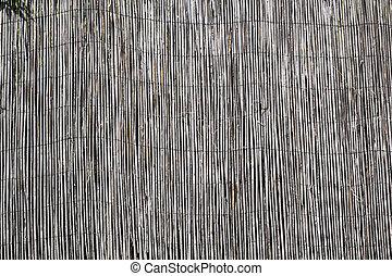 Reeds - Reeds