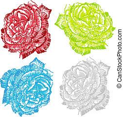 Rose Drawing Set