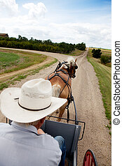 Horse and Buggy - A horse pulling a cart accross a beautiful...