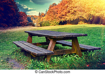 Lonely picnic place in autumn forest