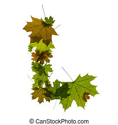 letter L from green maple leaves