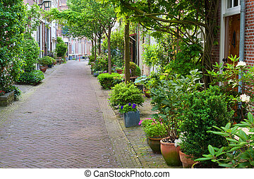 Harlem small street - Quiet little street of Haarlem in...