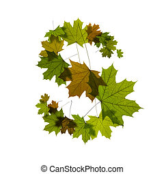 letter S from green maple leaves