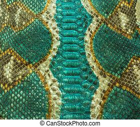 serpente, fondo, pelle