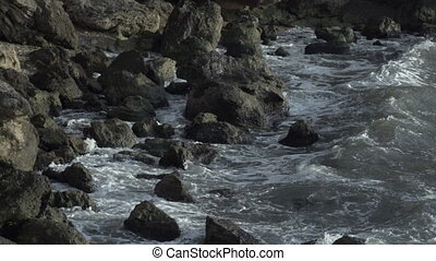 Sea gulls playing in shallow water on a rocky seashore...