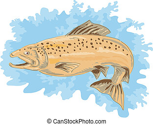 Brown trout - illustration of a spotted Brown trout