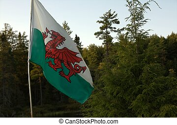 The Welsh Flag - The flag of Wales. The red dragon became...