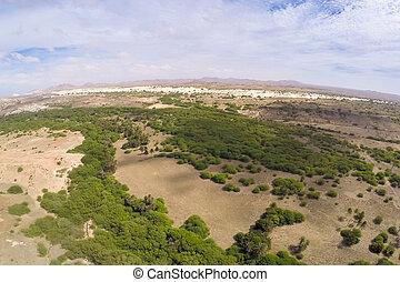 aéreo, vista, -, Oasis, cerca, Viana, desierto,...