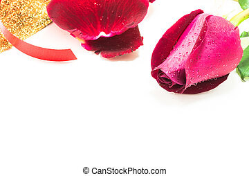 red rose on white background, Valentines Day background.