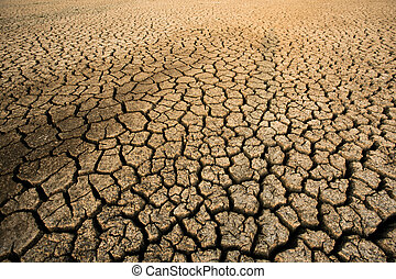 Background of dry cracked soil dirt