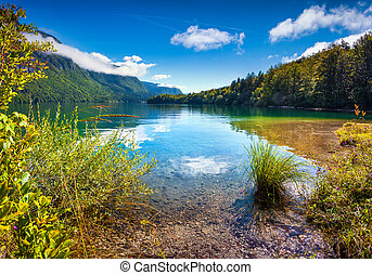 Colorful summer morning on the Bohinj lake in Triglav...