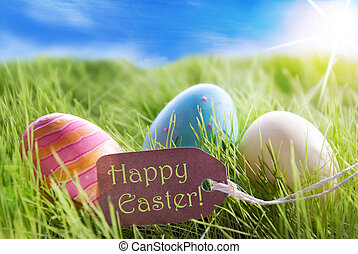 Three Colorful Easter Eggs On Sunny Green Grass With Label...