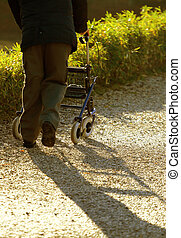 disabled elderly with medical Walker for walking in the Park