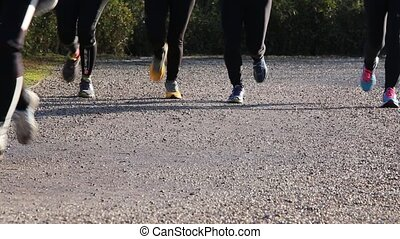 people who walk and run - many people who walk and run to...