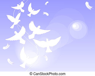white pigeons - Background with effect of a lens and flight...