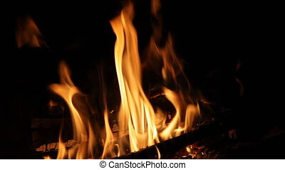 Bright fire of a fire against a dark background