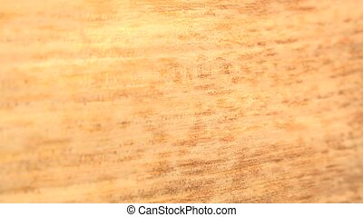 (Perfect Loop) Quarter Wood Cut - Closer look of quarter cut...