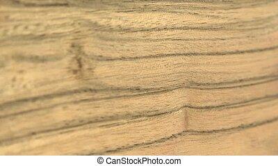 (Perfect Loop) Wood Sheet of Paldao