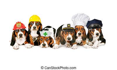 fila, de, perritos, en, trabajo, sombreros,