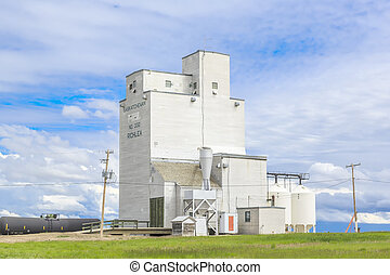 Richlea Grain Elevator - The grain elevator in the small...