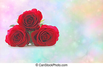 Three Beautiful Red Roses - Three red rose heads stacked on...