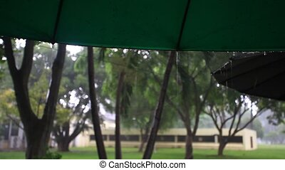 part of the umbrella in park In rain. HD. 1920x1080. Blured...