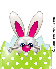 easter bunny in spring egg with place for text - easter...