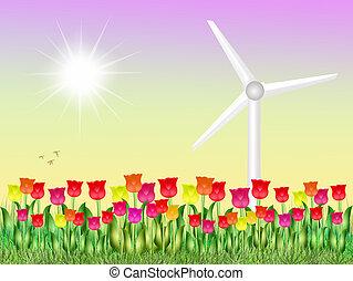 eolic in tulips field - illustration of eolic in tulips...