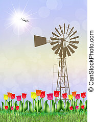 tulips field in the farmland - illustration of tulips field...
