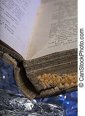 Old damaged book damaged on frozen ice