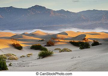 沙子, 沙漠
