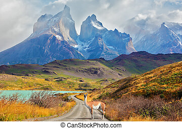 Majestic day in Patagonia - Majestic peaks of Los Kuernos...