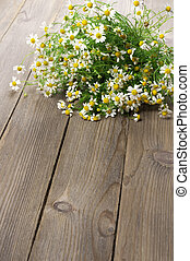 Chamomiles bouquet - Wild chamomiles bouquet lying on wooden...