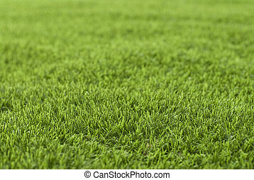 Turf - The artificial turf isolated remind unblemished...