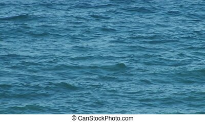 Blue Sea Waves - Close up with the specific motion of blue...