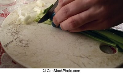 Cutting Green Fresh Onion - Cutting green fresh onion on...