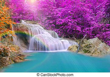 underbar, Vattenfall, med, Regnbågar, In, djup, skog,...