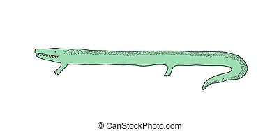 Isolated crocodile vector illustration