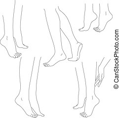 Womans legs female bare feet vector