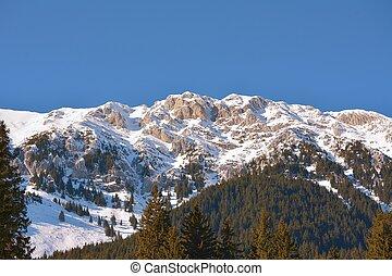 Alpine landscape Piatra Craiului mountains.