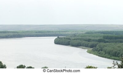 Forest on the River Shore - Forested zone on the shoreline...