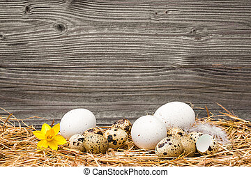 Easter eggs on wooden background - Eate