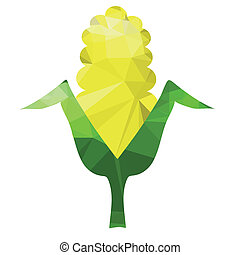 corn cob - illustration with corn cobs on white background