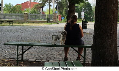 Little Dog and Owner Sitting - Large woman sitting on a...