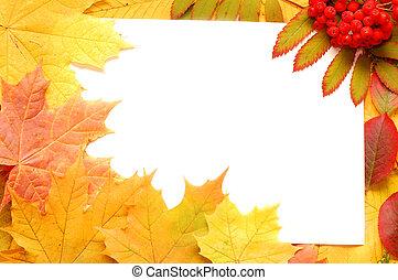 autumn fall leaf frame background