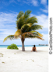 relax under the palm tree - woman sitting under the palm...