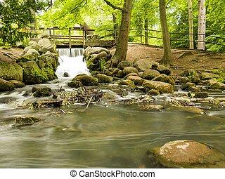 potok, Gdańsk, Park, wodospad, las, Drewna, zielony, oliva...