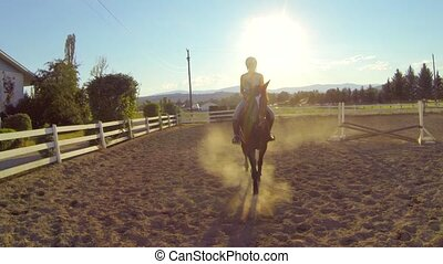 Horse Walks Toward Viewer in Ring - A horse and rider walk...