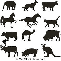 animals  - Abstract collection of  vector animals